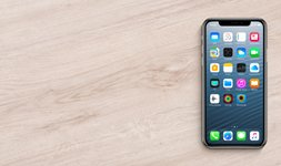 iPhone XR LCDs